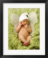 Framed Baby Fairy On Green