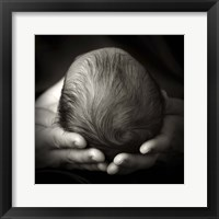 Baby In Hands Framed Print
