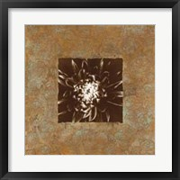 Framed Dahlia on Copper I