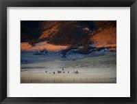 Framed Rusher Ranch