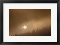 Framed Wild Moon II
