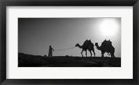 Framed Camel Trip, Jordan