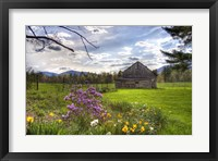 Framed Spring Barn