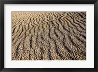 Framed Canunda National Park
