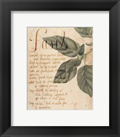 Framed Herb Study I