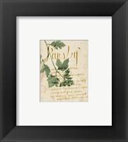 Framed Herb Study V