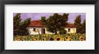 Framed Tuscan Summer 1