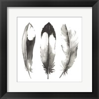 Watercolor Feathers II Framed Print