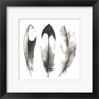 Framed Watercolor Feathers II
