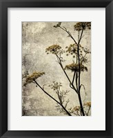 Framed Big Sur Yarrow I