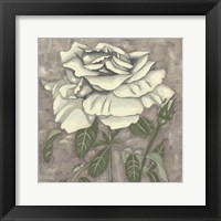 Silver Rose I Framed Print