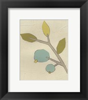 Simple Stems II Framed Print