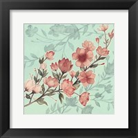 Cherry Blossom Shadows I Framed Print