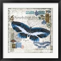 Framed Butterfly Artifact III