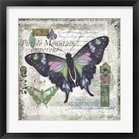 Framed Butterfly Artifact IV