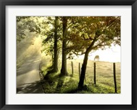 Morning Graze II Framed Print