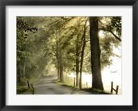 Fresh Morning II Framed Print