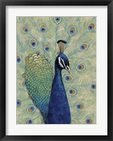 Framed Blue Peacock I