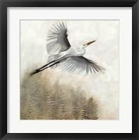 Waterbirds in Mist I Framed Print