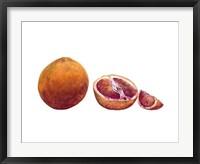 Framed Watercolor Blood Orange