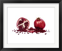 Framed Watercolor Pomegranate