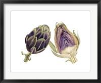Framed Watercolor Artichoke
