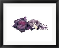 Framed Watercolor Purple Cabbage