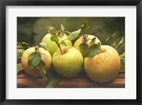 Jill's Green Apples I Framed Print