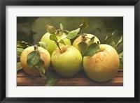 Jill's Green Apples II Framed Print