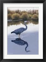 Framed Blackwater Reflections I