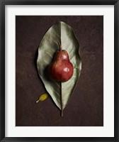 Framed Leaf and Pear 4