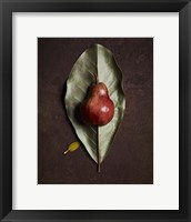 Framed Leaf and Pear 4