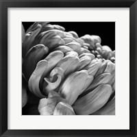Mum I Framed Print
