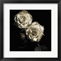 Framed Circus Roses