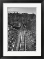 Framed Lonely Tracks B&W