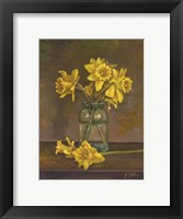 Framed Late Daffs