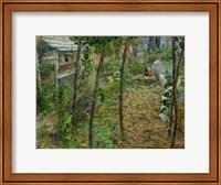 Framed In The Garden, 1885