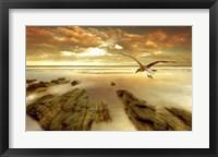Framed Soft Sunrise on the Beach 4