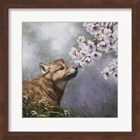 Framed Baby Blossoms
