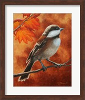 Framed Autumn Chickadee