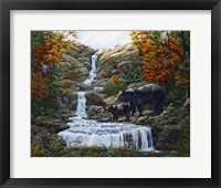 Framed Black Bear Falls