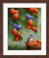Framed Bluebirds and Peaches