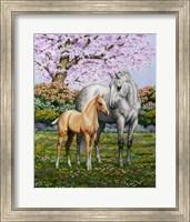 Framed Spring's Gift
