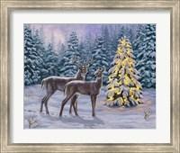 Framed White-tail Christmas