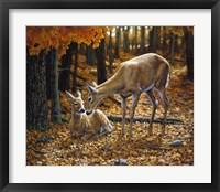 Framed Autumn Innocence II