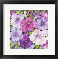 Framed Petunias