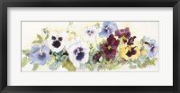 Framed Pansies On Parade