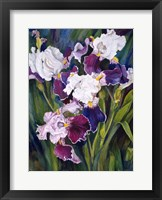 Framed Wind Blown Iris