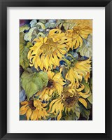Framed Cascading Sunflowers