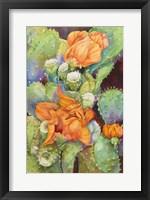 Framed Desert Blooms